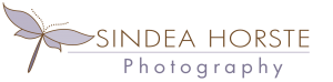 Sindea Horste Photography